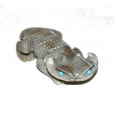 Horny Toad Lizard